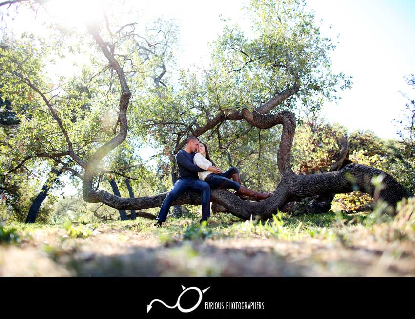 arboretum arcadia engagement photography(2)