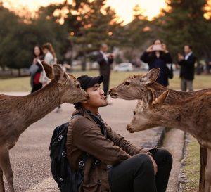 Deer Whisperer Pc antgoonie