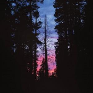 No sunset is ever the same Enjoyed the sky showcasehellip