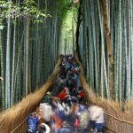 Into the Labirynth People watching continued in Kyoto Bamboo Forest